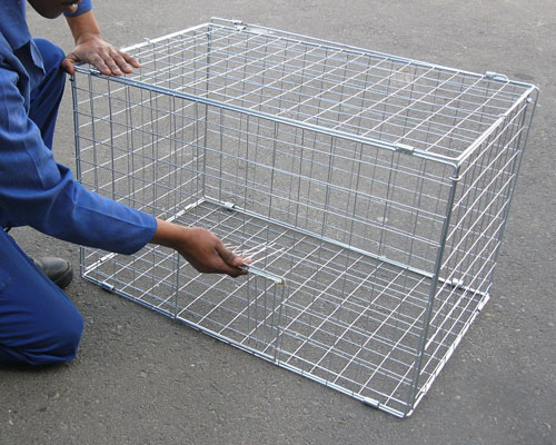 other-repellers-bird-cage-trap-feature-image2