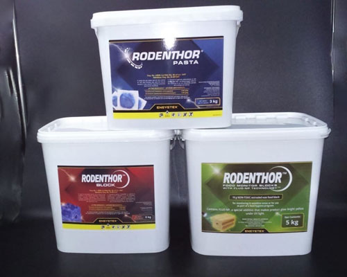 single-feed-rodentothor-blocks-feature-img