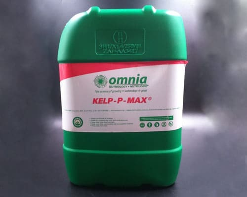 Liquid-Fertilizer-and-Foilar-feeds-KELP-P-MAX-featured-img