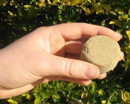 organic-fertilisers-guanosol_feature